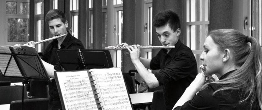 Orchester, Ensembles und Bands